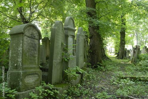 Fototapeta Tarnow, Cmentarz zydowski.