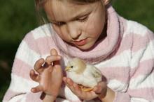Petite Fille Avec Un Poussin Dans Les Mains