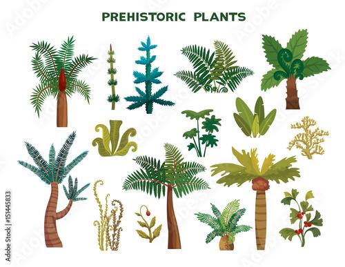 Set of prehistoric plants Tablou Canvas