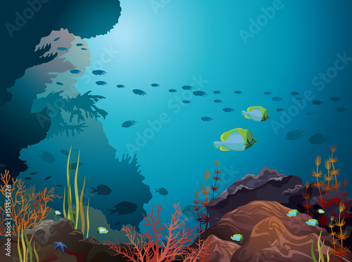 Photo Coral reef and underwater creatures.