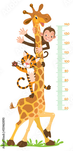 Photo  Giraffe, monkey, tiger. Meter wall or height chart