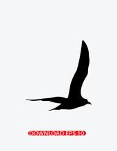 Seagull Silhouette Icon, Vector
