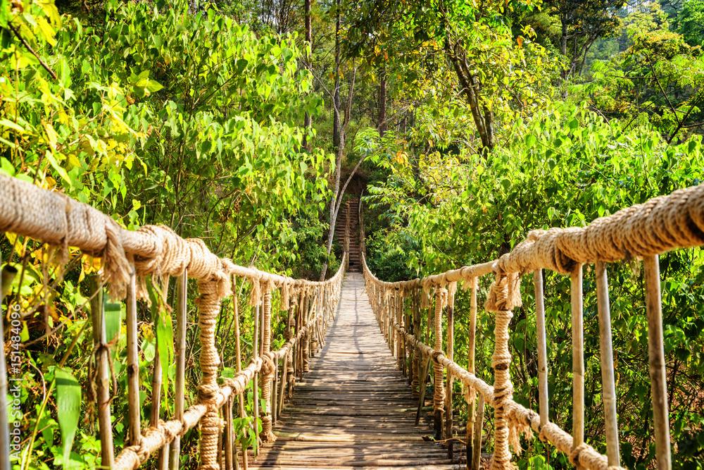 Piękna kładka wykonana z liny i bambusa <span>plik: #151484096 | autor: efired</span>