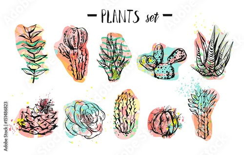 Hand drawn vector abstract graphic creative succulent,cactus and plants collection set colorful artistic brush painted isolated on white background.Unique unusual hipster trendy design.Modern art