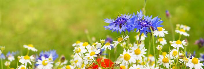 Wild flower bouquet .