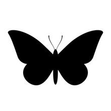 Moth Vector Icon