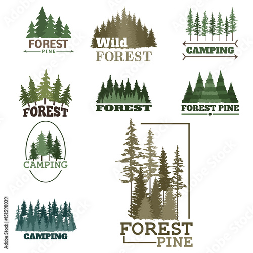 Obraz Tree outdoor travel green silhouette forest badge coniferous natural logo badge tops pine spruce vector. - fototapety do salonu