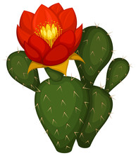 Vector Illustration Of A Cactu...