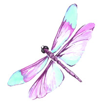 Watercolor Color Dragonfly Dra...