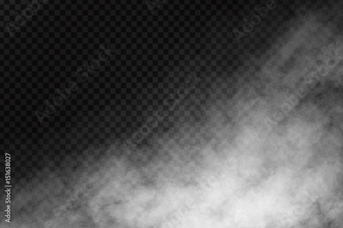 Fotobehang Rook Vector realistic isolated smoke effect on the transparent background. Realistic fog or cloud for decoration.