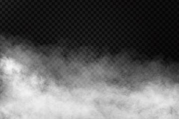 Wektor realistyczny efekt na białym tle dymu na przezroczystym tle. Realistyczna mgła lub chmura do dekoracji.
