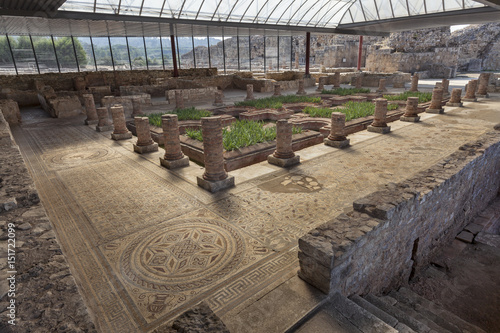Foto op Aluminium Rudnes Roman ruins and mosaic in House of the fountains in Conimbriga, Portugal
