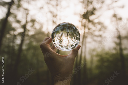 Hand holding crystal ball in forest