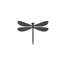 Dragonfly Insect Vector Icon I...