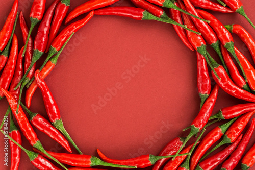 red hot chili peppers, popular spices concept - red hot chili peppers pods in beautiful circle composition of a colorful area on red background, top view, flat lay, free space for text