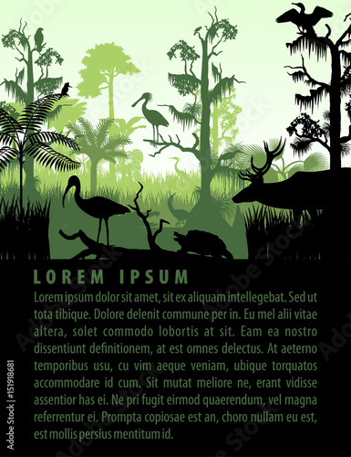 Foto vector rainforest wetland silhouettes in sunset design template with heron, deer, gator, ibis