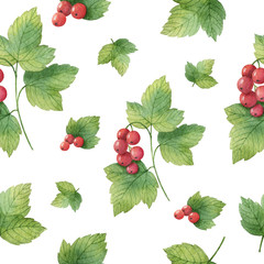 FototapetaHand drawn watercolor seamless pattern of Currants.