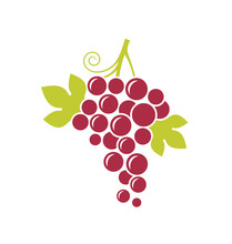 Red Grapes. Fresh Fruit With Leaves On White Background