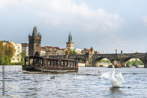 Swans near wooden cruise boat on Vltava river. Prague, Czech Republic
