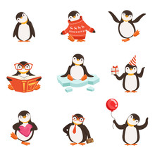 Cute Little Penguin Cartoon Ch...