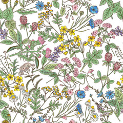 Panel SzklanyHand drawn herbs background. Vector seamless pattern
