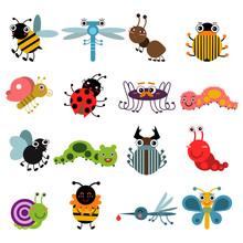 Cartoon Bugs And Insects. Vect...