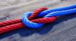 Leinwandbild Motiv Kreuzknoten mit rotem und blauem Seil auf Holz