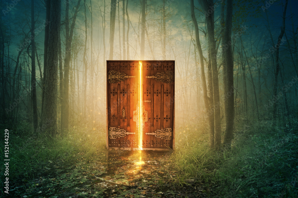 Fototapety, obrazy: Glowing door in forest