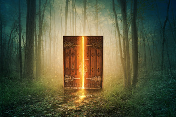Fototapeta Glowing door in forest