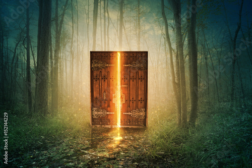 Wall Murals Forest Glowing door in forest