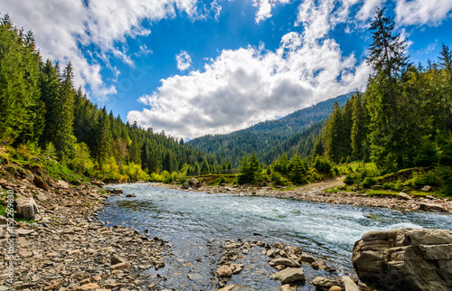 Staande foto Bleke violet River among the forest in picturesque mountain landscape