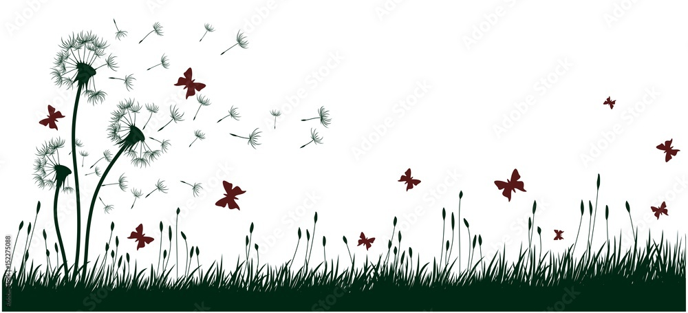 Fototapety, obrazy: Dandelions with butterflies.