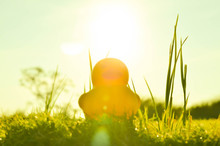 Cute Yellow Rubber Duck On Field Of Grass And Sun In Morning