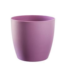 Purple Flowerpot Isolated On White.