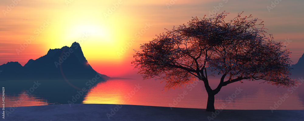illustration of a tree and sunset