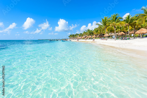 Canvas Prints Green coral Akumal beach - paradise bay Beach in Quintana Roo, Mexiko - caribbean coast