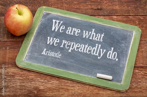 Fotografía  We are what ... Aristotle quote