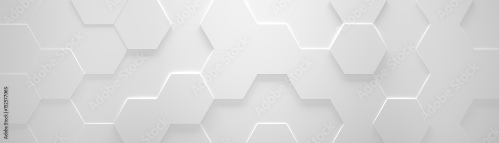 Fototapeta White Wide Hexagon Background (Site head) (3d illustration)
