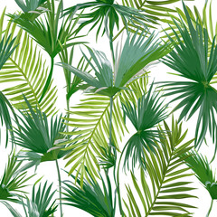 Fototapeta Liście Tropical Palm Leaves, Jungle Leaves Seamless Vector Floral Pattern Background