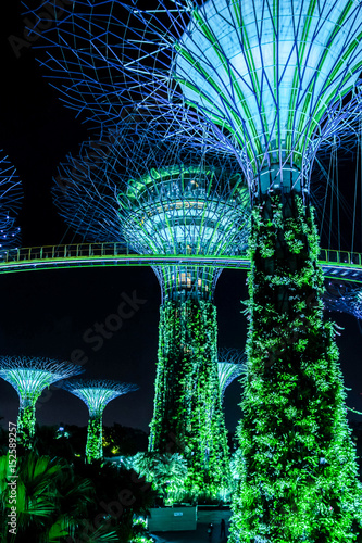 Tuinposter Singapore Supertreegarden by night in Singapore