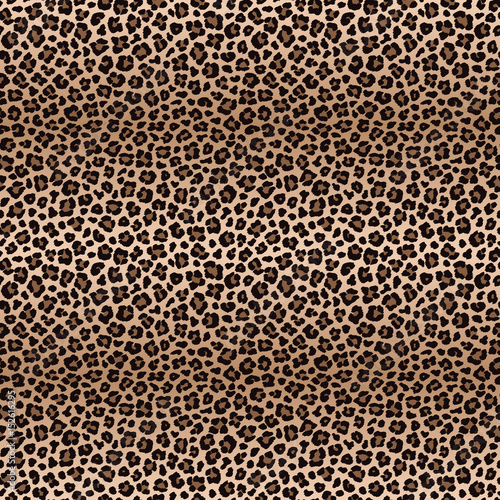 Foto op Aluminium Luipaard Leopard seamless pattern with color transitions