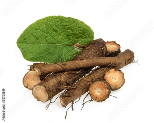 Photo  Burdock root isolated