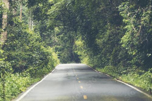 Keuken foto achterwand Olijf Road in tropical forest field, on Khao Yai National Park, Thailand