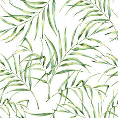 FototapetaWatercolor pattern with palm tree leaves. Hand painted exotic greenery branch. Botanical illustration. For design, print or background