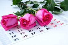 Three Pink Roses Are On The Calendar