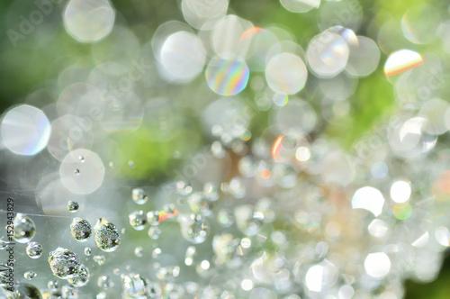 水滴の宝石