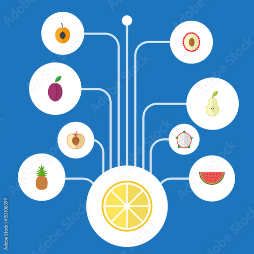 Flat Melon Slice Lime Duchess And Other Vector Elements Set Of