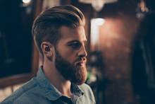Barbershop Concept. Profile Si...
