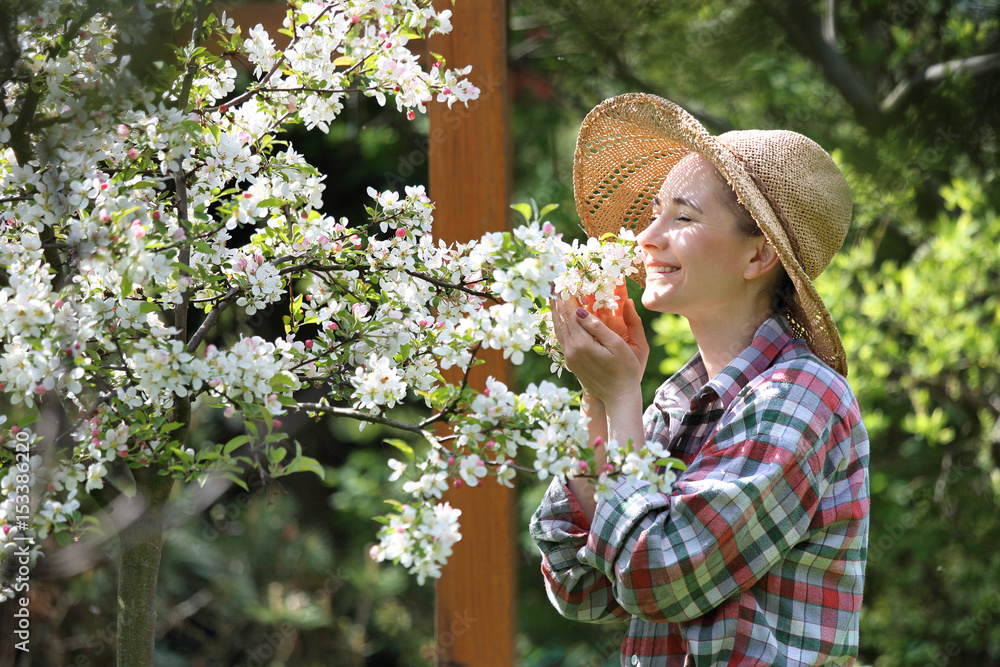 Fototapeta Kwitnąca jabłoń. Szczęśliwa kobieta wącha kwiaty jabłoni.