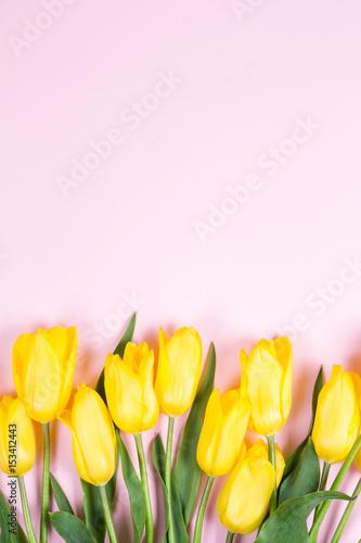Foto op Canvas Bloemen Bouquet of beautiful fresh yellow tulips on pink background
